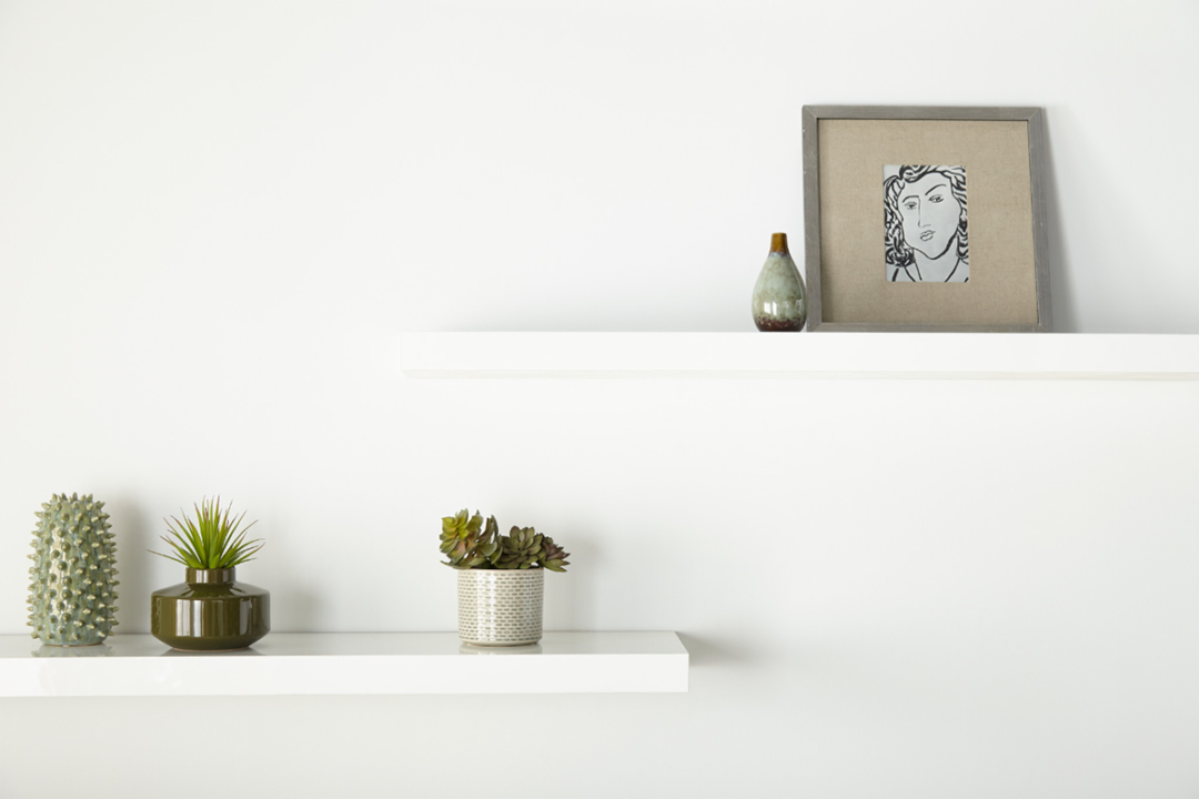White wall with white shelves and decorative plants on top of them